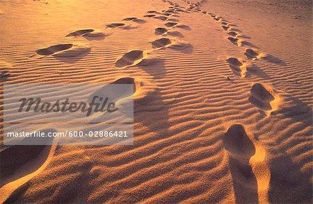 Empreintes dans le sable au coucher du soleil