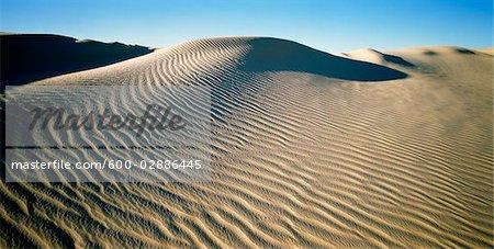 Dune de sable, lac Mungo, Parc National de Mungo, New South Wales, Australie
