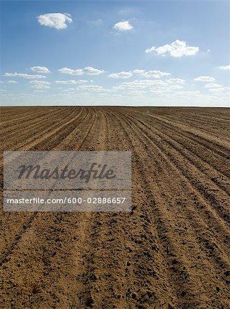 Prêt de champ labouré pour le blé de semence, Australie