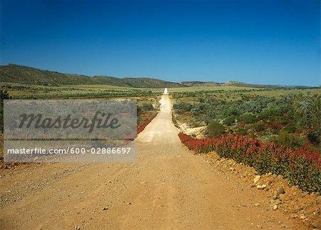 Gravier Road, gammes Gammon, Parc National des Flinders Ranges, Australie-méridionale, Australie