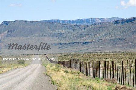 Dirt Road Through a Desert Landsape