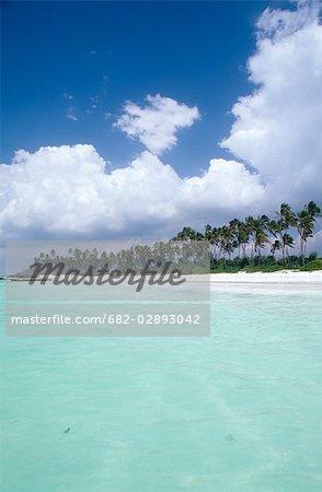 Scenic View of Zanzibar Beachfront