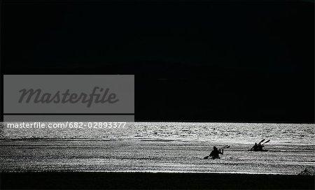 Silhouette de gens en kayak en mer