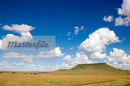 Vue sur les champs de ferme Natal de l'autoroute N3