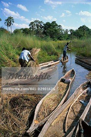 Mokoros (dugout canoes), Okavango Delta, Botswana, Africa