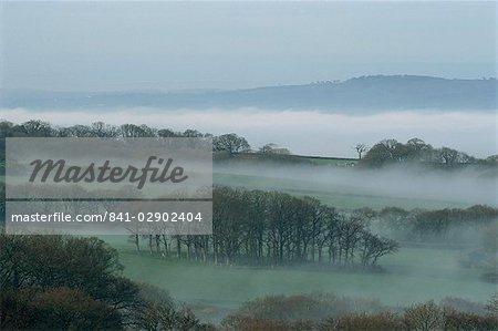 Nebel füllt die Wiesen im April in Devon, England, Vereinigtes Königreich, Europa