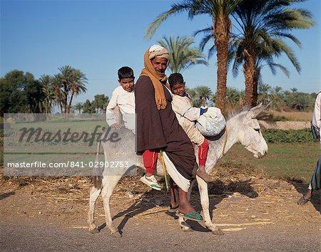 Porträt eines Mannes und zwei jungen Reiten einen Esel, Ägypten, Nordafrika, Afrika