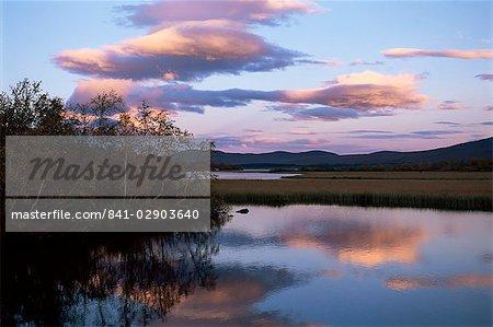 Arbres et lac au coucher du soleil, Laponie, Laponie, Suède, Scandinavie, Europe