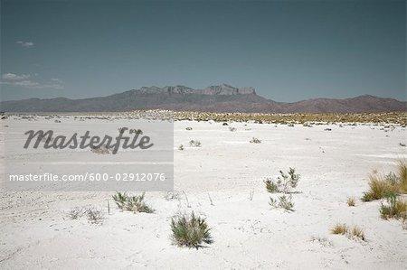 Salt Basin in Salt Flat, Texas, USA