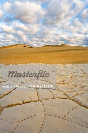 Mesquite Flat Sand Dunes et montagnes Grapevine, Death Valley National Park, Californie, USA