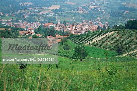 Vineyards around Dogliani, The Langhe, Piedmont, Italy, Europe