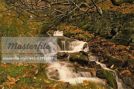 Stream läuft durch Grindsbrook, Edale, Peak-District-Nationalpark, Derbyshire, England, Vereinigtes Königreich, Europa