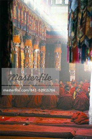 Monks inside the main prayer hall, Drepung Buddhist monastery, Lhasa, Tibet, China, Asia