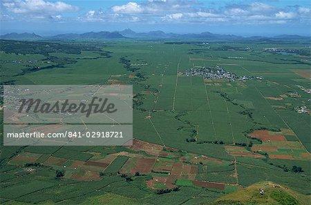 Champs de canne à sucre Le Puce pic, Port Louis, Ile Maurice, Afrique du