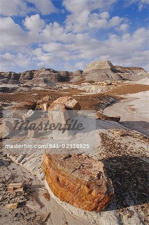 Blue Mesa, Petrified Forest National Park, Arizona, États-Unis d'Amérique