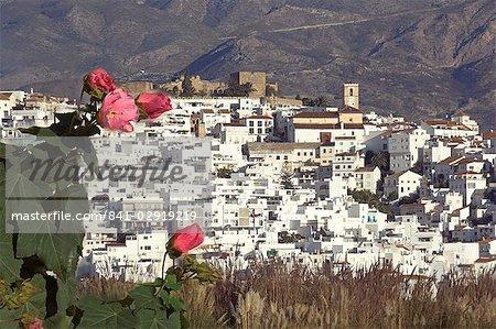 Salobrena, province de Grenade, Andalousie, Espagne, Europe