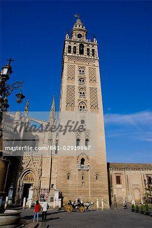 Cathédrale, Séville, Andalousie, Espagne, Europe