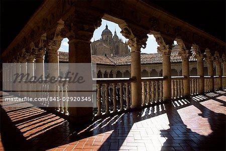 Cathédrale vue depuis le cloître du couvent de Las Dueñas, Salamanque, Castille-León, Espagne, Europe