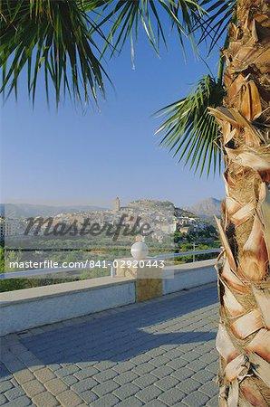 Vue du village de terrasse, entourée de palmiers, Polop, Alicante, Valencia, Espagne, Europe