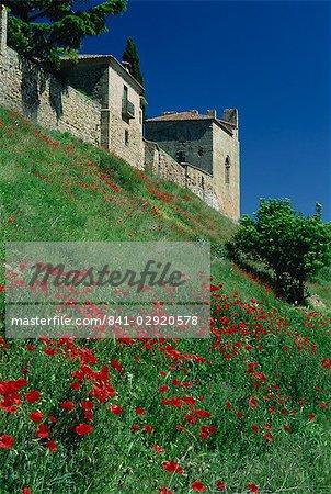Coquelicots sur la colline au-dessous de la ville, Siguenza, Castilla-La Mancha, Espagne, Europe