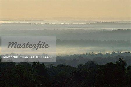 Dawn over rain forest of Biosphere Reserve, Peten, Guatemala, Central America