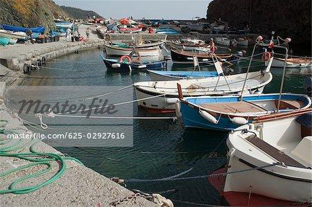 Bateaux amarrés au port, Riviera italienne, Parc National des Cinque Terre, Mar Ligure, RioMaggiore, Cinque Terre, Vernazza, La Spezia, Ligurie, Italie