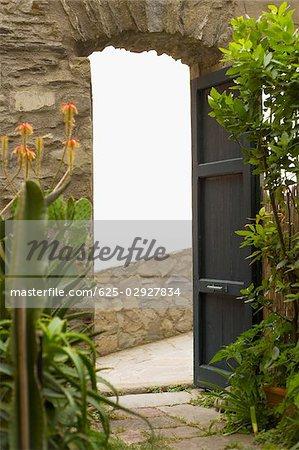 Plants at a doorway, Cinque Terre National Park, La Spezia, Liguria, Italy