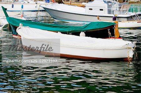 Boats moored at a harbor, Italian Riviera, Genoa, Liguria, Italy