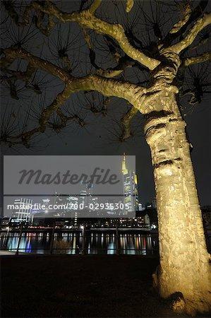 L'arborescence et la Skyline de Francfort, Hesse, Allemagne