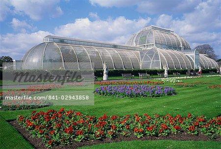 La serre des palmiers, le Royal Botanic Gardens à Kew (Kew Gardens), patrimoine mondial de l'UNESCO, Londres, Royaume-Uni, Europe