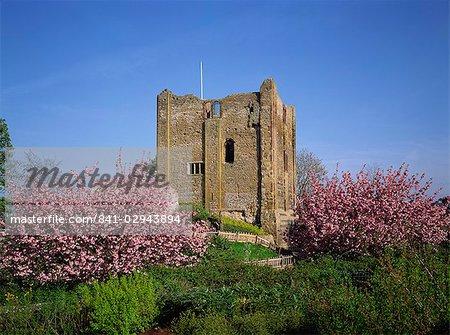 Guildford Castle, Surrey, England, United Kingdom, Europe