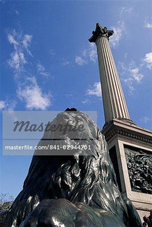 Löwe Statue unter Nelsons Spalte, Trafalgar Square, London, England, Vereinigtes Königreich, Europa