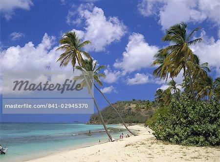 Darkwood Beach, Antigua, Leeward Islands, Caribbean, West Indies, Central America