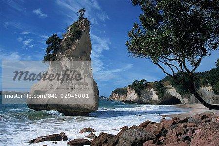 Te Horo rock, cathédrale Cove, péninsule de Coromandel, North Island, Nouvelle-Zélande, Pacifique