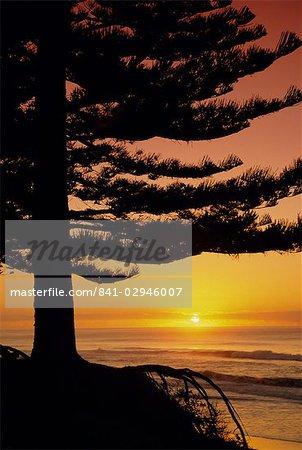 Lever du soleil, Pine Beach, Gisborne, côte est, North Island, New Zealand, Pacifique
