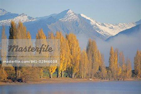 Autumnal trees beside Lake Wanaka, Otago, South Island, New Zealand