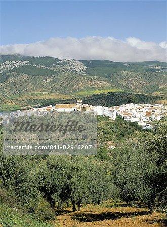 El Burgo village et olive groves entouré de nuages au sommet des montagnes de la Sierra de las Nieves, El Burgo, Malaga, Andalousie (Andalousie), Espagne, Europe