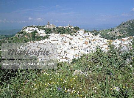 Fleurs sauvages et village blanc avec un château maure, perché sur le flanc de la montagne, Casares, Malaga, Costa del Sol, Andalucia (Andalousie), Espagne, Europe