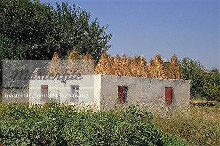 Sur le toit utilisé pour sécher les cultures de céréales, des fourrages, Anatolie, Turquie, Asie mineure, Eurasie