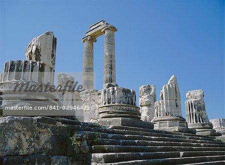 Temple d'Apollon, Didyme, Anatolie, Turquie, Asie mineure, Asie