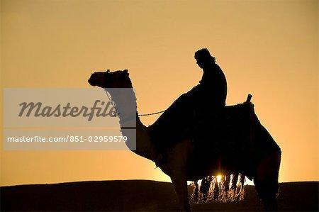 Man on camel at dusk near the Pyramids,Giza,Cairo,Egypt