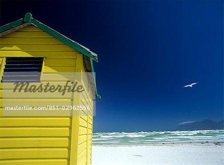 Seagull flying over yellow beach hut,Muizenburg beach,Cape Town,South Africa.