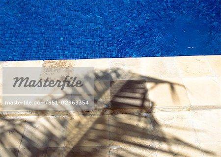 Shadow of palm frond beside the swimming pool of The Palms Hotel,near Paje,Zanzibar,Tanzania.