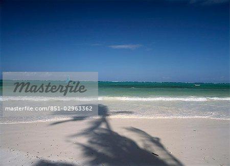 Shadows of palm trees,Matemwe beach,Zanzibar,Tanzania