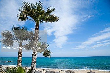 Vue depuis la terrasse sur la plage, l'hôtel Bel Azur. Hammamet, en Tunisie, l'Afrique du Nord