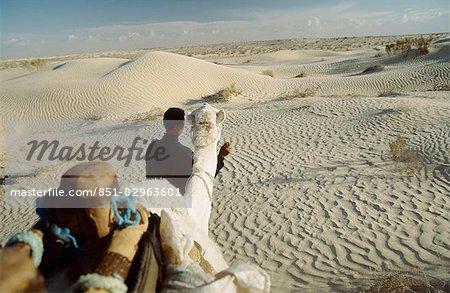 Vue de chameau pendant une randonnée chamelière dans le désert du Sahara de Douz (ville sur le bord du sud de la Tunisie), Tunisie.