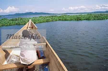Masses of water hyacinth collecting downwind on Lake Victoria.  Uganda.