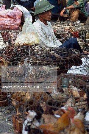A market,Hanoi,Vietnam
