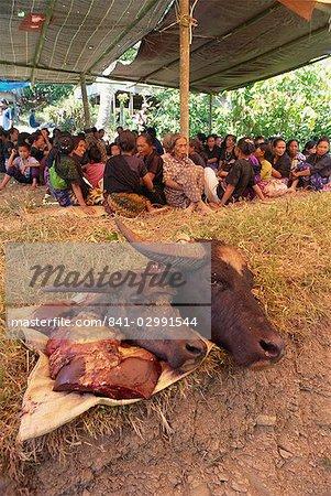 Traditionnelle Toraja funéraires, Sulawesi, en Indonésie, l'Asie du sud-est, Asie