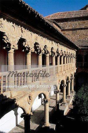 Beaux cloîtres des Convento de las Duenas, Salamanque, Espagne, Europe